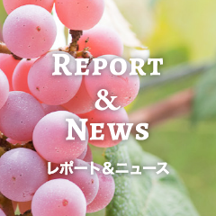 Report & News レポート&ニュース